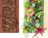 DIY Vertical Planter Succulent Wall Planter 16 inch by 9 inch