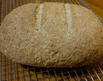 Rice Bread recipe (gluten free, no dairy, no gum)