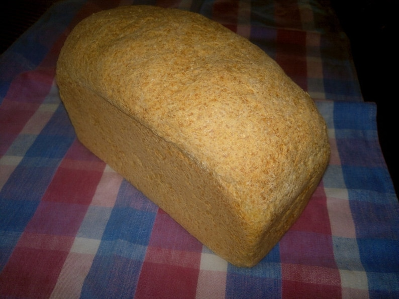 Millet Bread recipe gluten free and dairy freeMillet Bread image 0