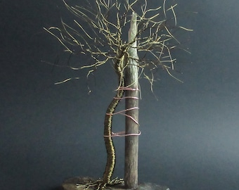 Tree of Andry Wire Tree  Sculpture Gift | Orthopedic Surgeon | Chiropractic  | Orthopaedic | Doctor Gift | Christmas Gift | Birthday Gift