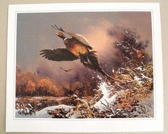 Vintage 1985 Ted Blaylock Pheasant Print