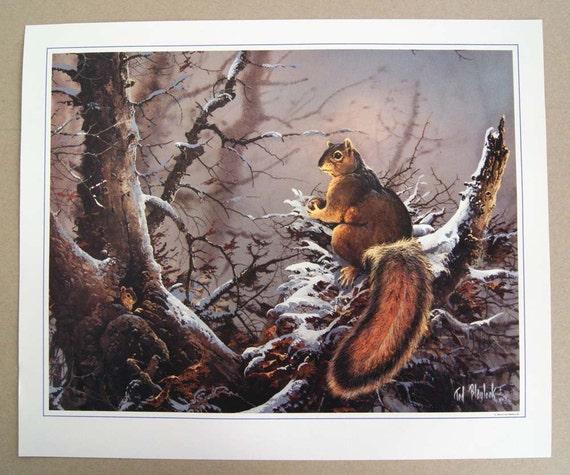 Vintage 1985 Ted Blaylock Squirrel Print