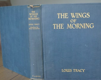 Vintage Novel, The Wings of Morning, by Louis Tracy, 1924, lovely illustrations