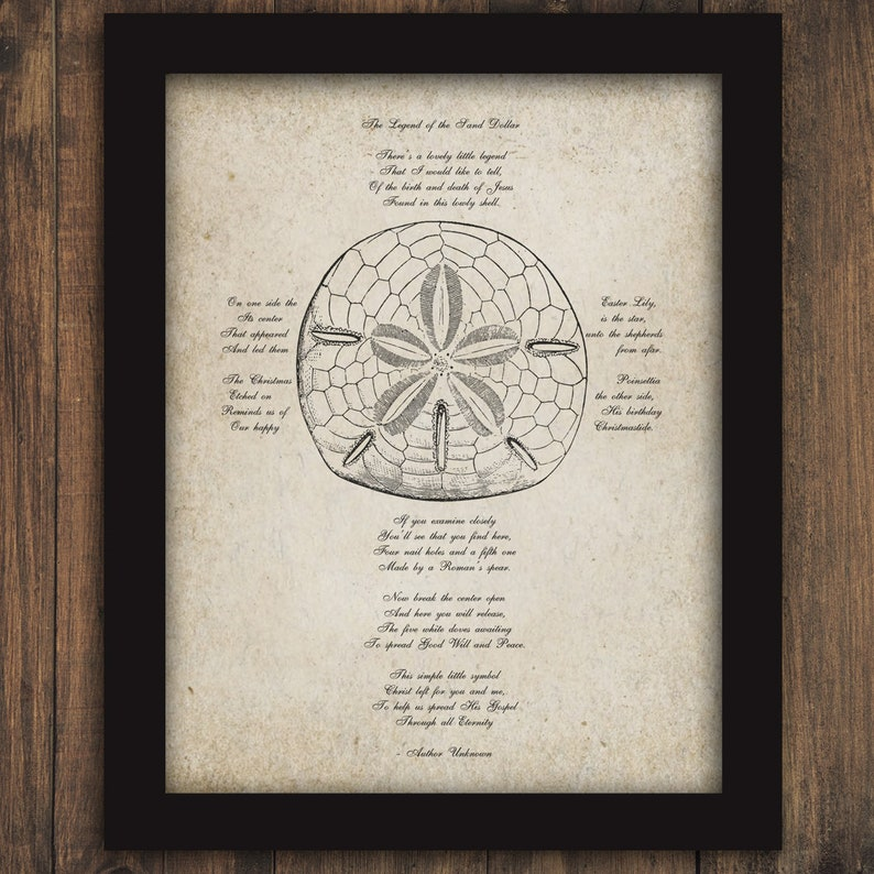 picture about Legend of the Sand Dollar Poem Printable titled Legend of the SAND Greenback Poem Cross Printable Electronic Wall Artwork Seaside Ocean Sea Lifetime Electronic Wall Decor Phrases Poetry Prompt Obtain #2190
