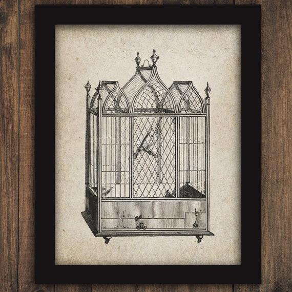 Antique Bird Cage Birds Aviary Printable Digital Wall Art Etsy