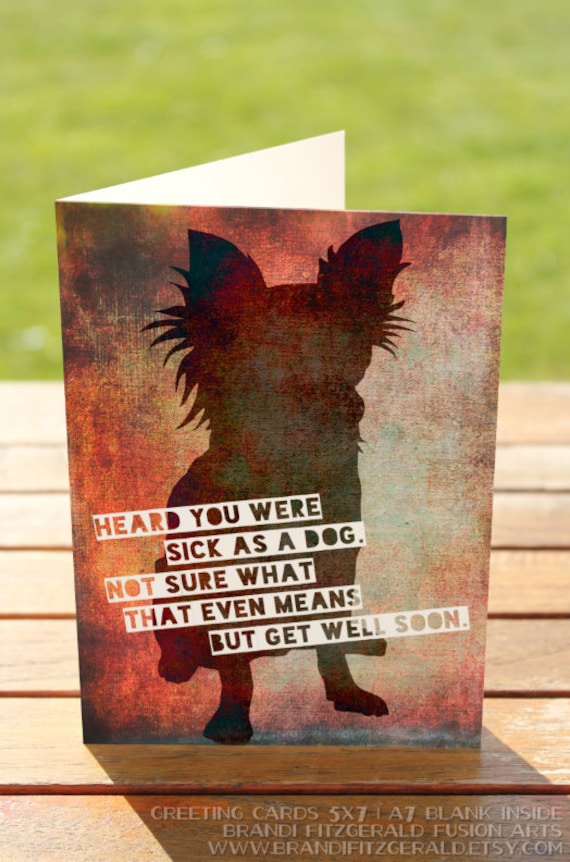 Get well soon greeting card sick as a dog chihuahua a7 5x7 like this item m4hsunfo