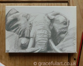 Print on block canvas of Elephant Drawing. Ready to Hang.