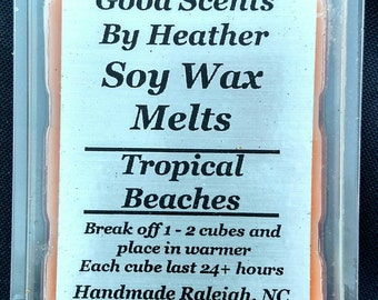 Tropical Beaches Soy Tarts - Wickless Candles - Teacher Gift - Hostess Gift