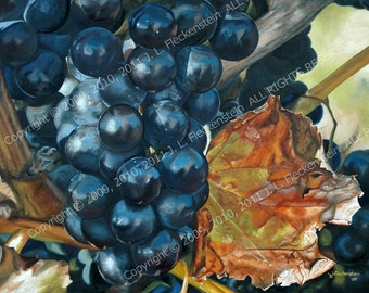 Baco Noir Grapes on Vine An Original Oil Painting by J. L. Fleckenstein 2010 25 inches by 30 inches