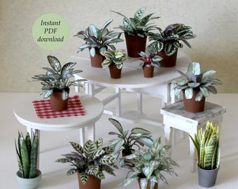 Miniature Houseplants I - for Doll House Scale 1:12 (and more) - 10 Different  - PDF printable to download