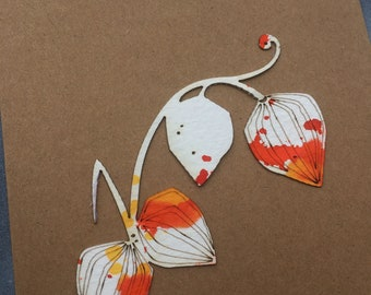 Limited Edition Paper Cuts - Set of 3 Hand Coloured Chinese Lantern Physalis Cards with Free U.K. delivery