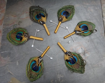 6 Peacock boutonnieres