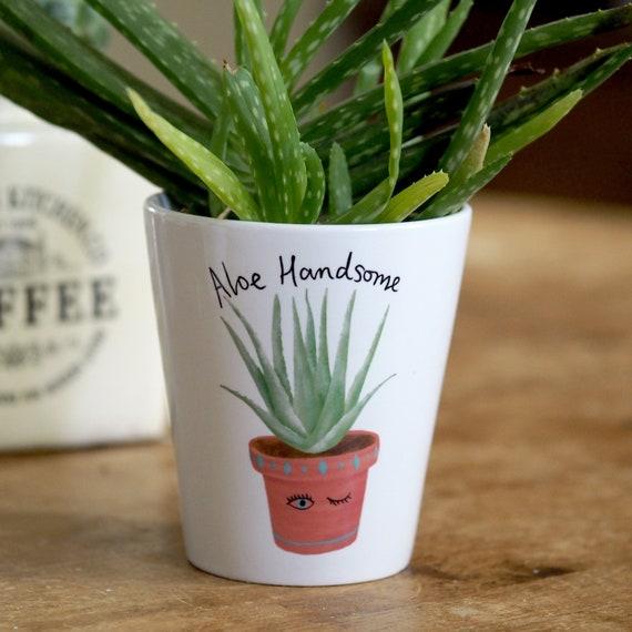 Aloe Handsome Plant Pot Succulent Pots Succulent Planter Etsy