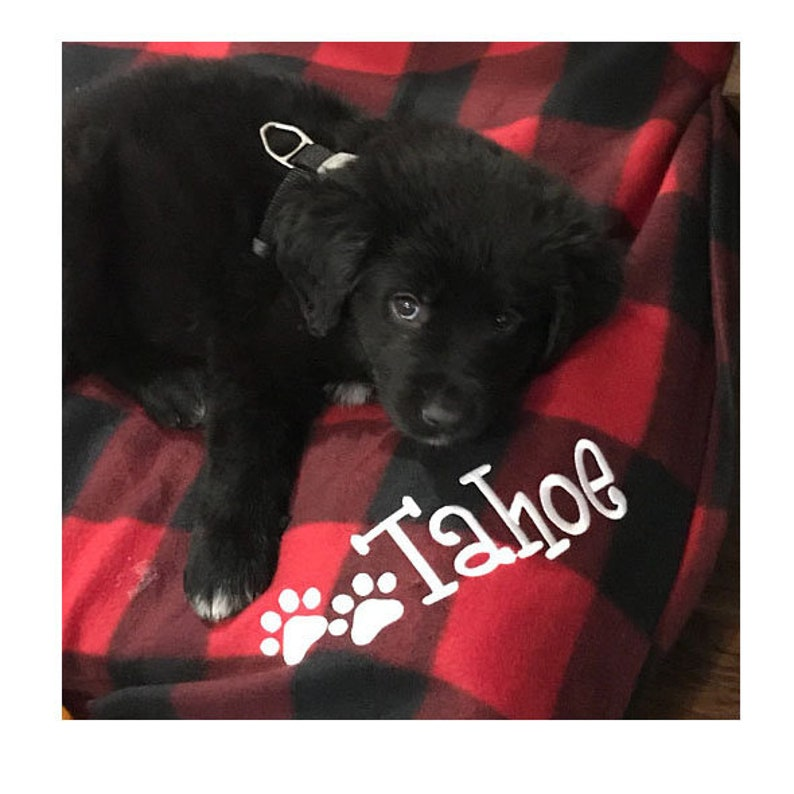 fa0bbbd5e60d7 Personalized Pet Blanket, Dog Blanket, Large Pet Blanket For Your Dog,  Personalized Dog Fleece Blanket, Pet Blanket With Pet Paws and Name