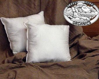 "Organic Cotton Throw Pillow 18x18"" handmade, in an organic cotton shell"