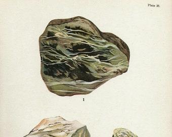 Vintage 1911 Minerals Print Antique Gems Serpentine 3 gemstones print, bookplate art print, minerals wall print wall art