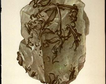 Antique Prints, 1950s  Rocks and Minerals 86, SILVER wall art vintage coloured illustration rocks natural science