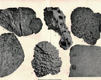 Vintage 1896 Antique METEORITES astronomy constellations -  comet meteor shower chart star