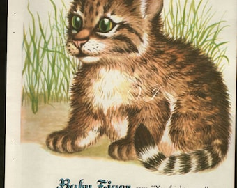 Antique 1940s childrens print, Baby Tiger, vintage art bookplate print tigers cat kitten