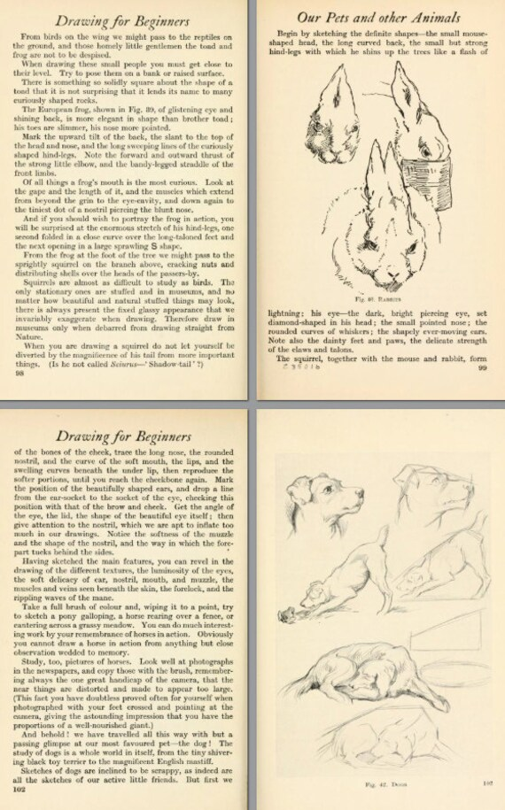 Drawing For Beginners An Illustrated Handbook On Learning To Draw 227 Pages Printable Or Read On Your Ipad Or Tablet Instant Download