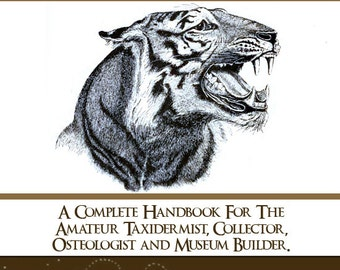 An Illustrated Guide To TAXIDERMY A Complete Handbook For The Amateur Taxidermist Read on Your iPad or Tablet Instant Download