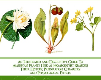American Homeopathic Plants 439 Pages Rare Illustrated and Descriptive Guide Volume 1 Read on Your iPad Tablet or Computer Instant Download
