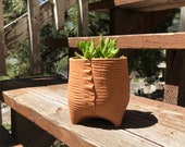 Terra Cotta Ribs Textured Ceramic Planter (Extra Small Tall), Succulent Planter, Cactus Planter, Herb Pot, Flower Pot