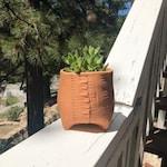 Terra Cotta Stripes Textured Ceramic Planter (Extra Small Tall), Succulent Planter, Cactus Planter, Herb Pot, Flower Pot
