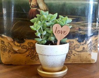 Wedding Favors - Love Planter Stakes - Rustic Wedding Favors - Succulent Stakes - Heart Shaped Love Planter Stakes