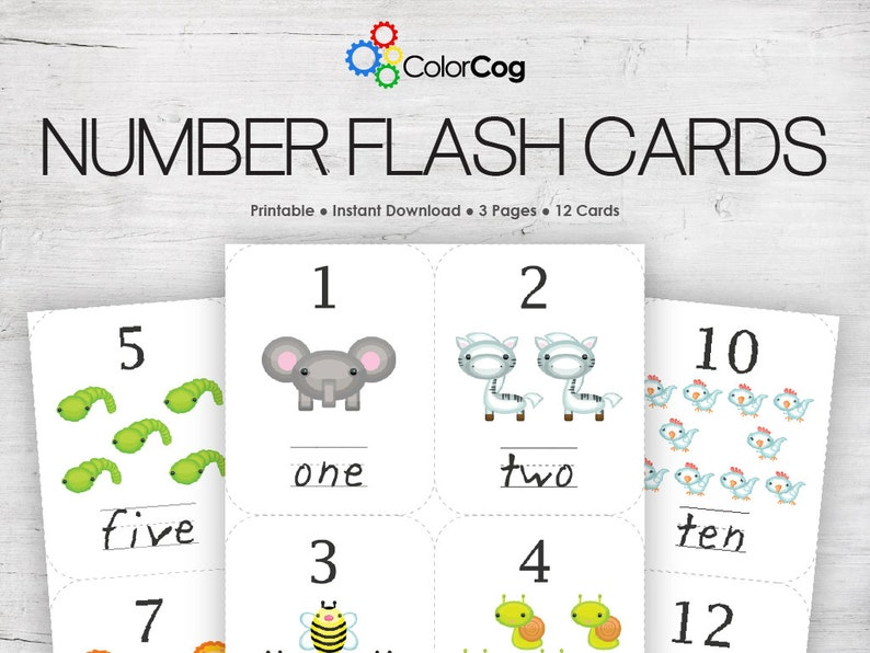 photograph relating to Number Flash Cards Printable identify Quantity Flash Playing cards Printable PDF