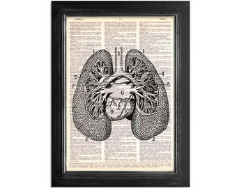 The Lungs - Medical Anatomy Art Print on Vintage Dictionary Paper - 8x10.5