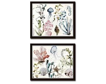 Watercolor French Sea Life Collage, Print Set, Giclee, Art Prints, Botanical Prints, Coastal Decor, Tropical Art, Wall Art, Wall Decor