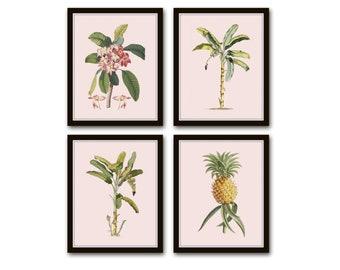 Vintage Tropical Botanical Print Set, Giclee Prints, Pineapple, Art, Beach Decor, Coastal Art, Botanical Print Set, Palm Tree Prints