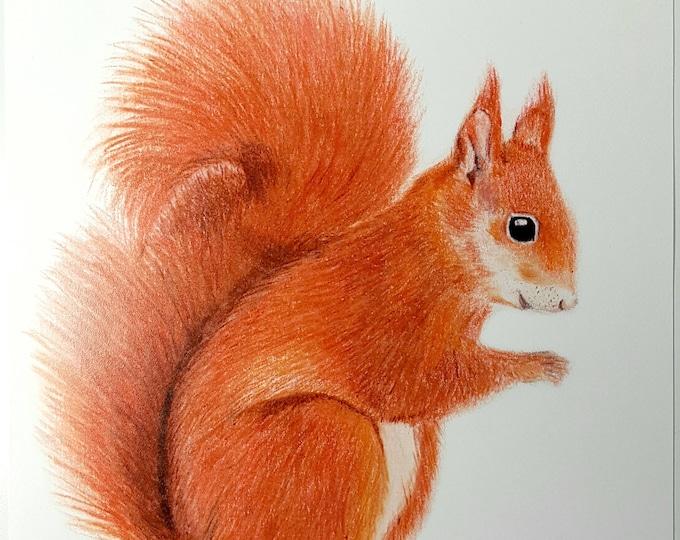 Eekhoorn kaart/ miniposter A5: 14,8 x 21 cm