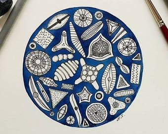 Science art Diatoms Original watercolor painting Algae Biology Geometric painting