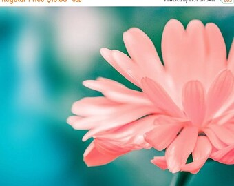 ON SALE nature photography fine art botanical photography flower 8x10 8x12 floral photography peach orange golden teal bedroom decor nursery