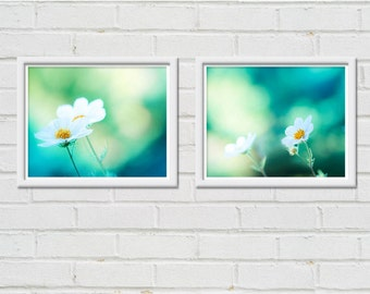 botanical photography nature floral print set of 2 8x10 fine art photography floral flower photography teal art print mint green blue cosmo