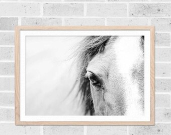 ON SALE horse art horse wall art black and white horse photography horse print horse wall decor black and white prints fine art photography