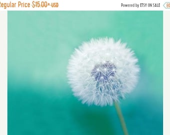 ON SALE Dandelion photography fine art photo dandelion botanical photography 8x8 8x10 8x12 nature photo blue green teal spring macro print