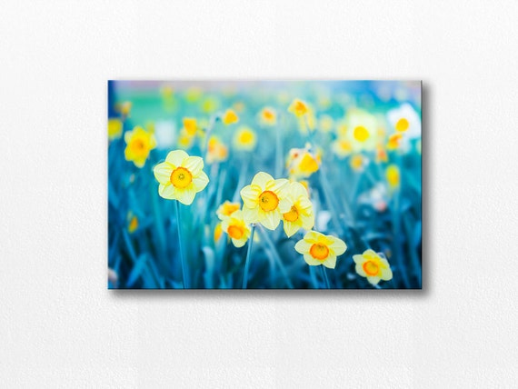 Large Daffodil Heart Orange Floral Flower Canvas Wall Art Picture