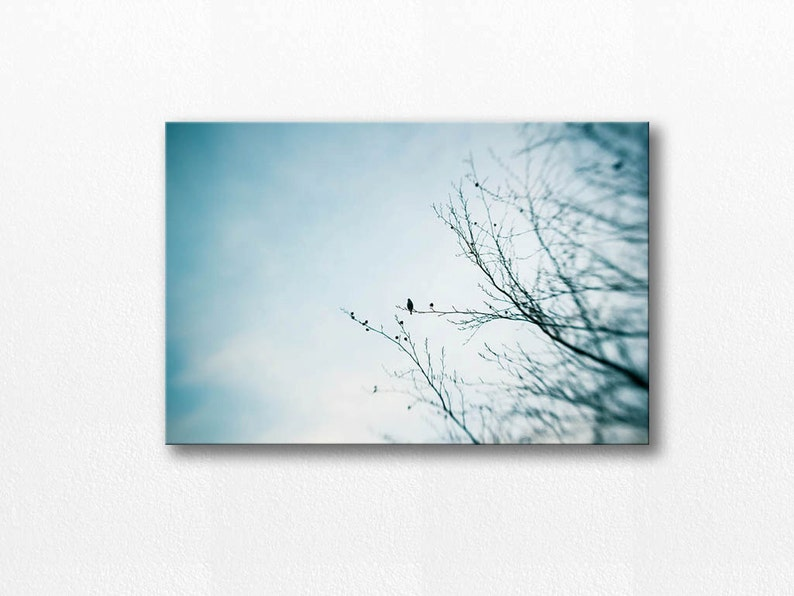 24x36 Inch Nature Poster Unframed of Mists Sometimes you Find Yourself