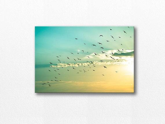 canvas art birds in flight wall art 20x30 birds photography etsy