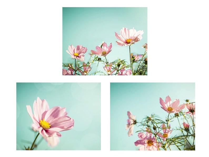 flower photography floral botanical print set of 3 8x10 11x14 fine art photography nature pink photography nursery decor bedroom aqua mint