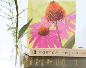 Pink Echinacea Blank Birthday Card - summer floral