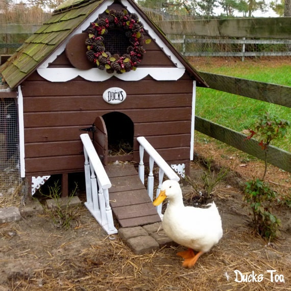 Easy Diy 4 X6 Chicken Coop Hen House Plans Pdf: Gingerbread Duck House Plans PDF Room In Coop For Up To 6