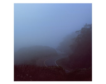 Print Only - Marin Headlands California San Francisco Fog Trees Windy Road Travel Landscape Nature Color Photography Photograph Square