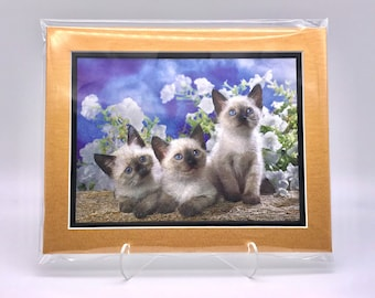 Vintage Siamese Himalayan Cat Baby Kitten Triplets Foil Etching Art Print Copper Gold Black Double Mat Ready to Frame 8x10 Image 7.5 x 5.5