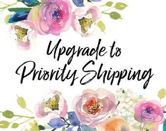 Upgrade to Priority EXPRESS Mail, EXPRESS, Shipping