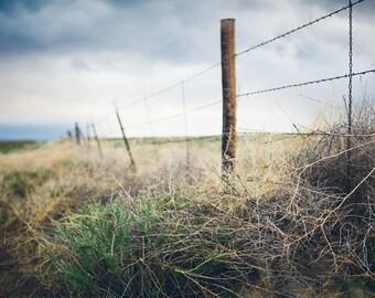 "Fine Art Photography, Landscape, Oregon, ""Fence"""