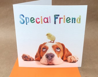 Light hearted dog and chicklet BIRTHDAY or GREETINGS card